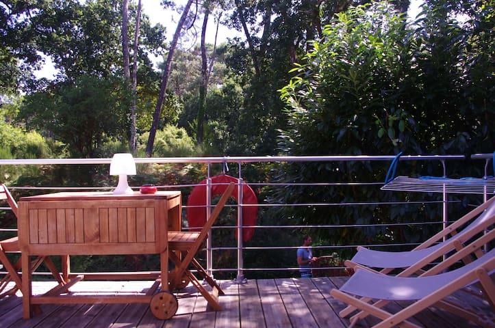 La Cabane Rouge sur la Forêt