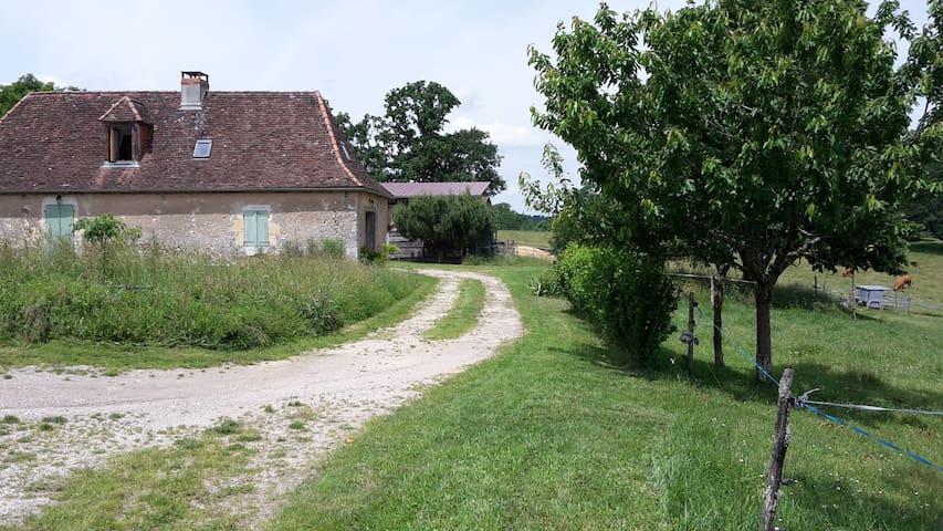 maison de caractère pleine nature, en Périgord - Saint-Crépin-d'Auberoche - Casa