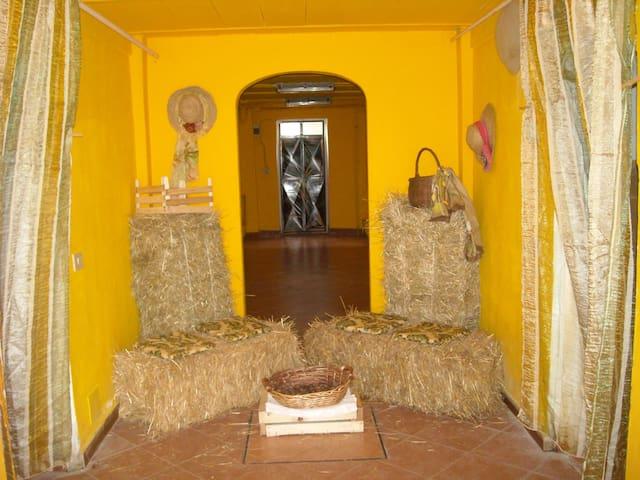 ANTICA PORCILAIA - Parasacco di Zerbolo' ( Pavia) - Daire