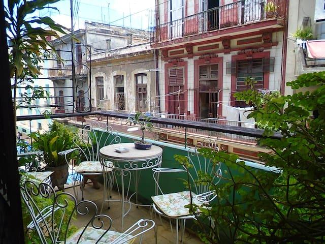 Elia's House - La Habana - Apartamento