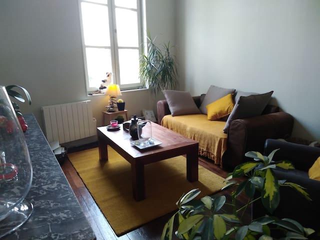 Duplex chaleureux  au cœur de Saumur
