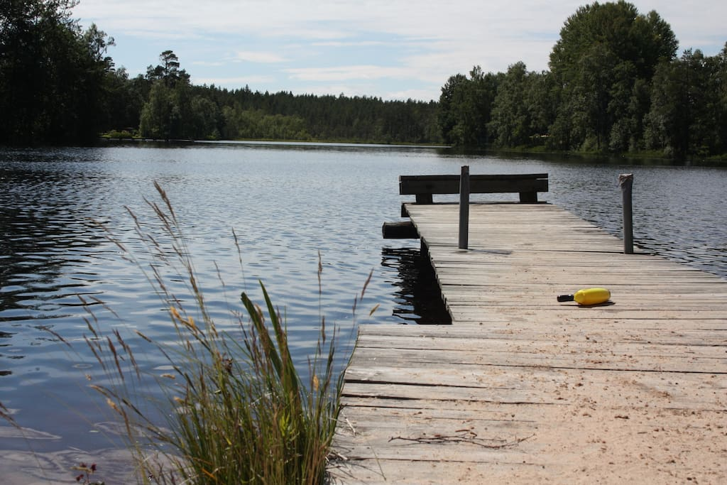 Lake for swimming and fishing /  sjö för bad och fiske