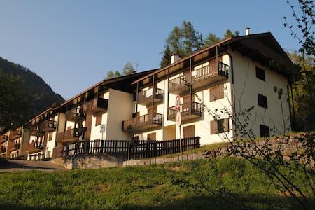 Residence Campicioi - Bilocali piano terra - - Pinzolo