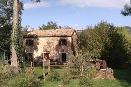 Beautiful Italy - Maiolati Spontini