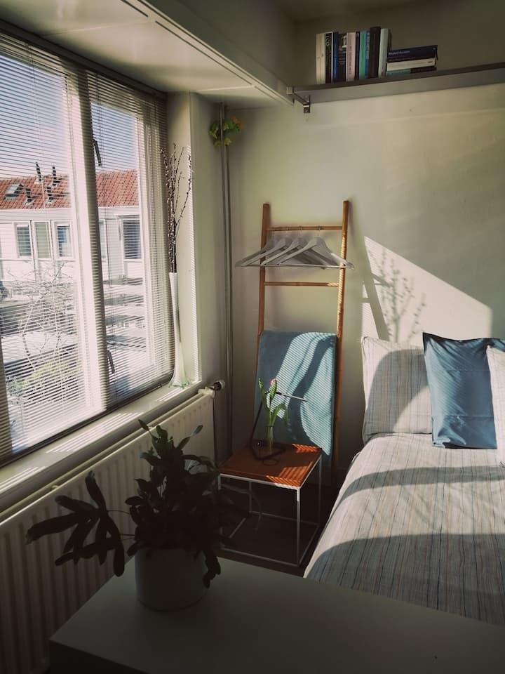 B&B 'de goede nacht' te Leeuwarden: Kamer Lies