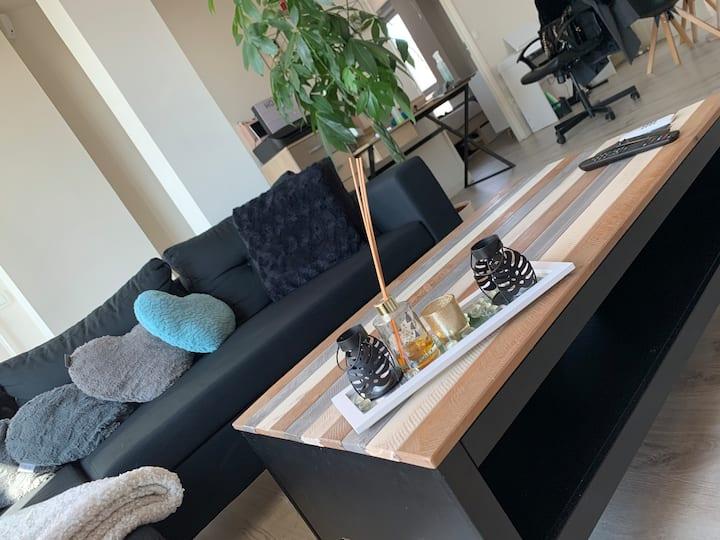 Grand appartement lumineux à Lille