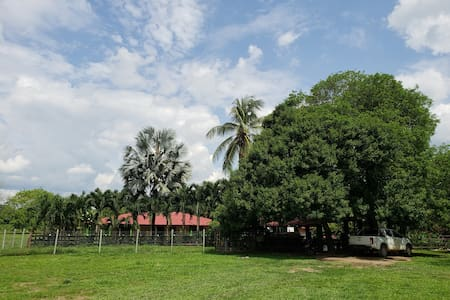Alojamiento Llanero