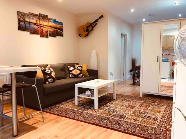 Spacious Large Studio Flat in North London