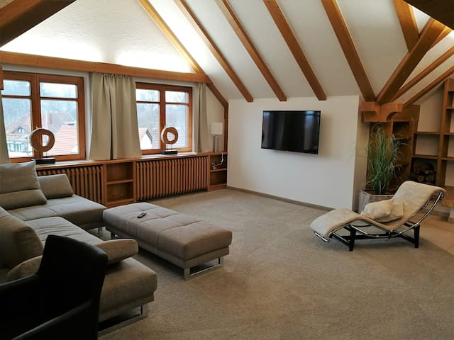 Appartement mit Panoramablick nahe Stuttgart/Ulm
