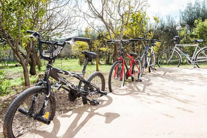 "Alghero by bike - ""3"""