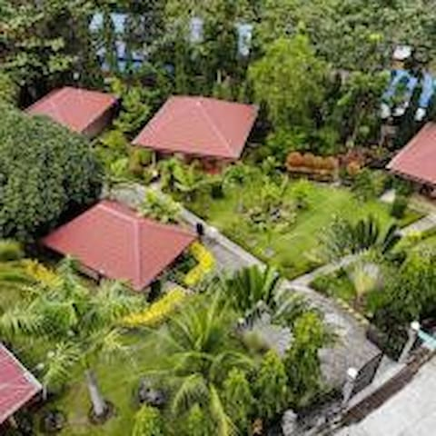 Aerial view of the compound