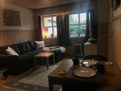 Cozy, little apartment located 20 min from Oslo