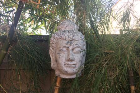 Secret Garden Oasis