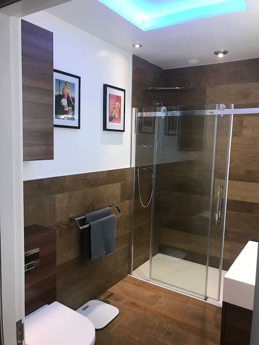 Private ensuite luxury bathroom - triple sized shower with body jets, telescopic head and rainfall overhead