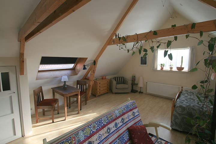 Knus appartement bij Elfstedenroute - Witmarsum - Appartement
