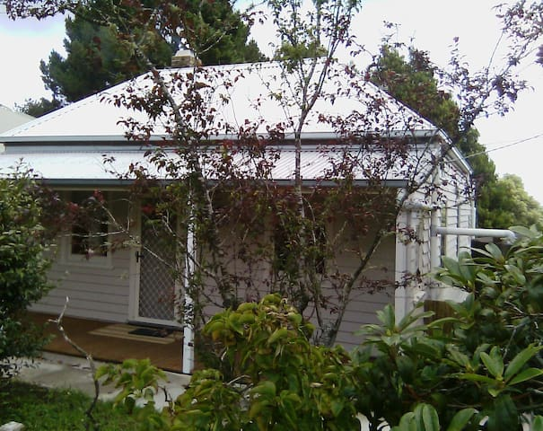 Otway National Park Cottage - Beech Forest - House