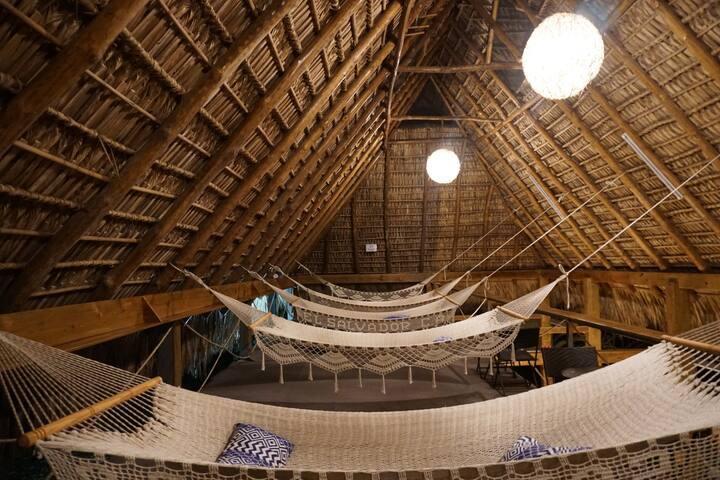Michanti - Home of Adventure