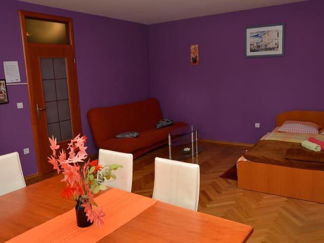 Studio apartmani u Slavonskom Brodu - Slavonski Brod - Huoneisto