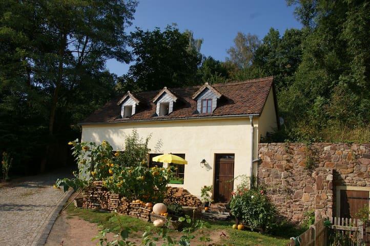 Wassermühle im wildromantischem Schanzenbachtal - Leisnig - Casa