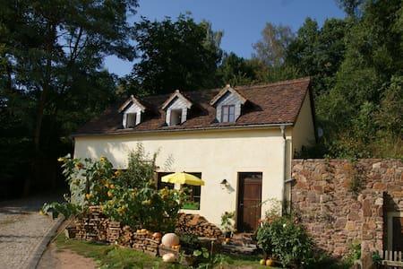 Wassermühle im wildromantischem Schanzenbachtal - Leisnig