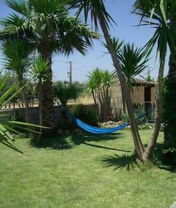 casa relax - Noto  - House