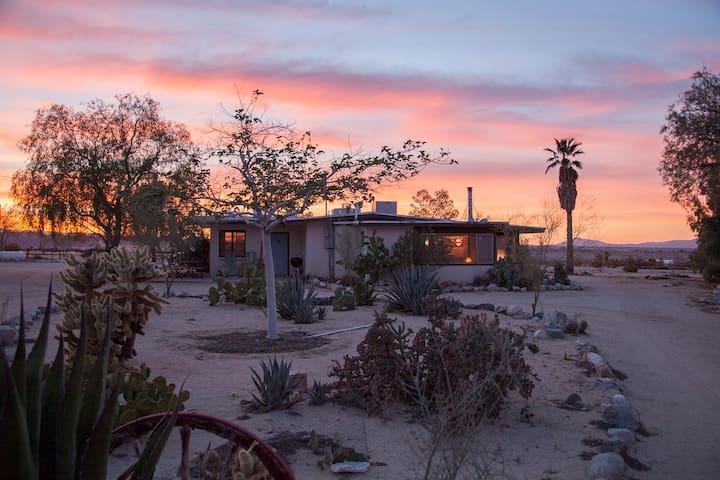 Midcentury Desert Escape