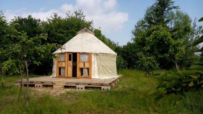 Nice eco  true canvas yurt in organic farm