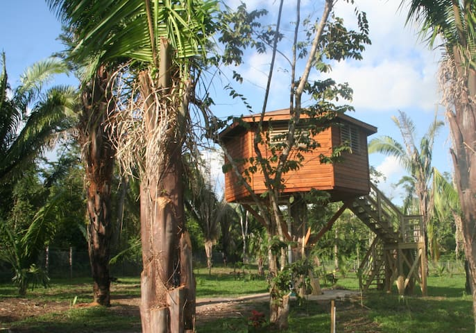 Tree house with pool access - Unitedville - Gîte nature