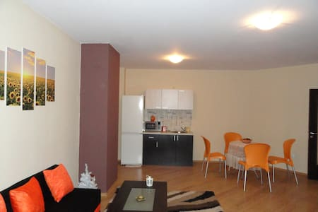 APARTMENT SUNFLOWERS AIRPORT - Sofia - Appartement