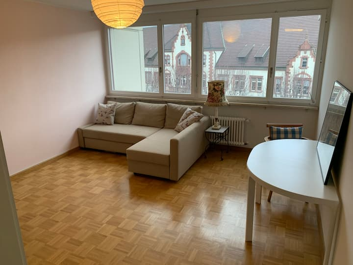 Cozy Flat in the Center of Kleinbasel