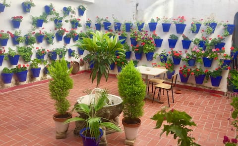 Apartamento Toril. Casco Histórico / Free wifi.