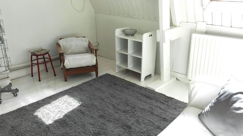 Sfeervolle bovenverdieping nabij centrum en park - Arnhem - Outro