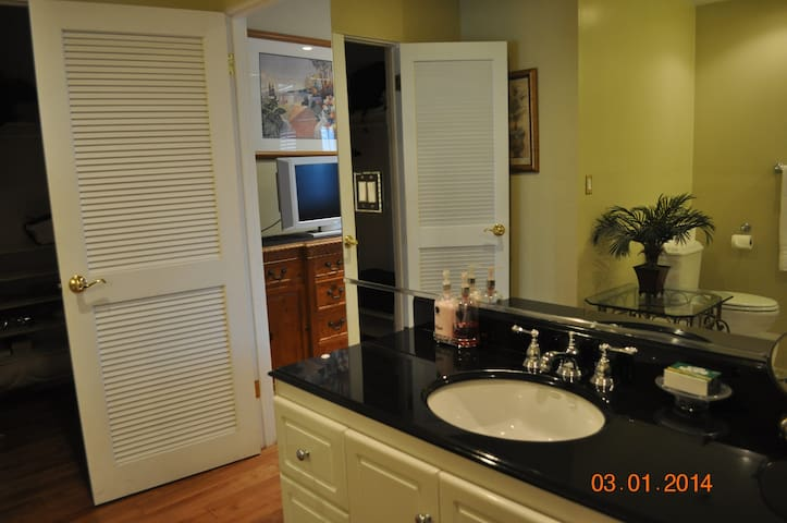 Master bath has walk-in closet and ample storage.