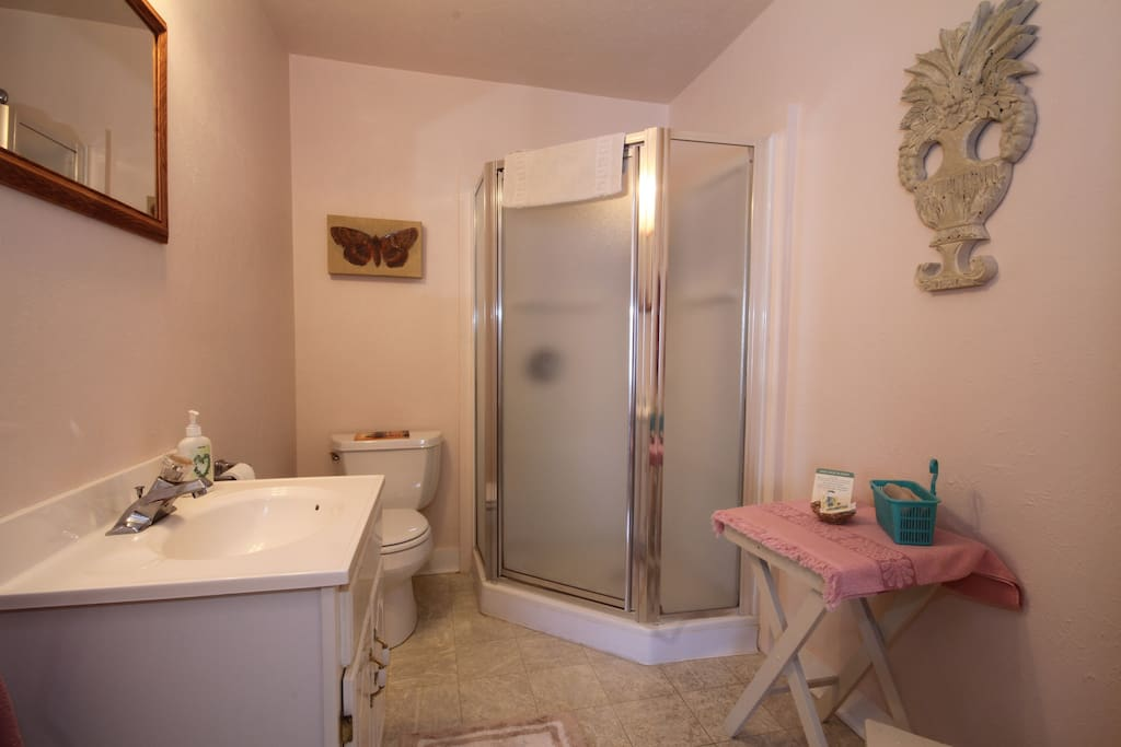 Private bath with stall shower