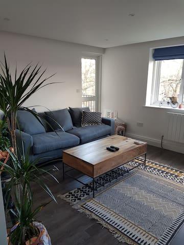 Renovated Bedroom in Vibrant Brixton
