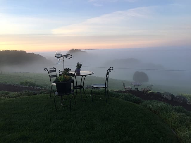 Sonoma Mountain Terrace-Valley View