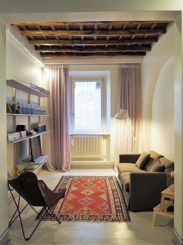 S.Ambrogio 15 - Apartment in the Center of Rome
