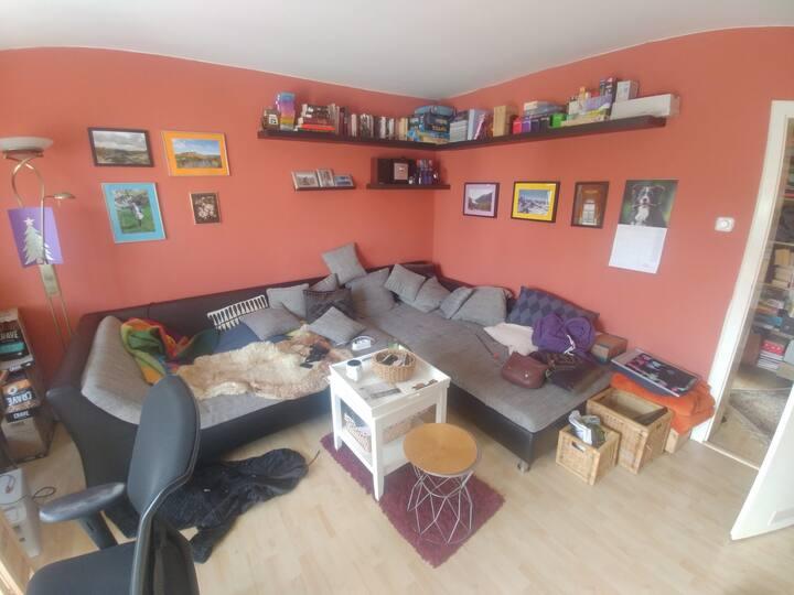 Schlafsofa im Wohnzimmer Karlsruhe