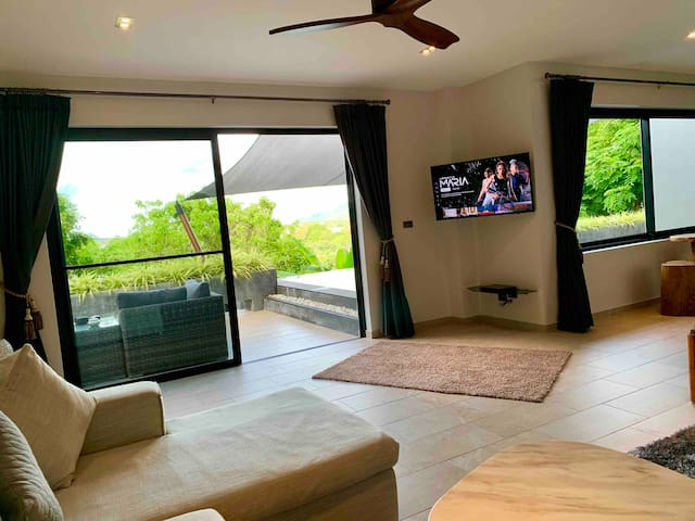 Beautiful view from the living room overlooking the terrace into lush vegetation.  Including smart TV with Netflix and DVD player.