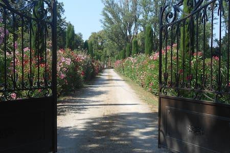 En Terre de Provence, le Mas Valérian