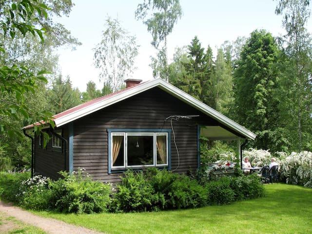 Björkhagen (VGT137)