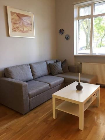 Charming entire apartment in Reykjavik city center