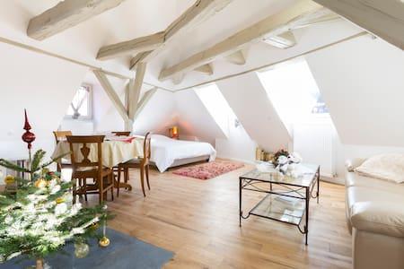 Loft Saint Nicolas - Colmar - Loft