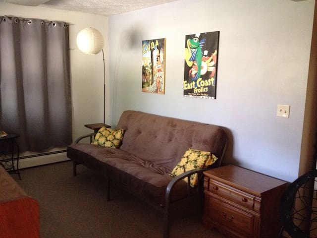 Private and spacious apartment, serene setting - Bloomington - Apartment