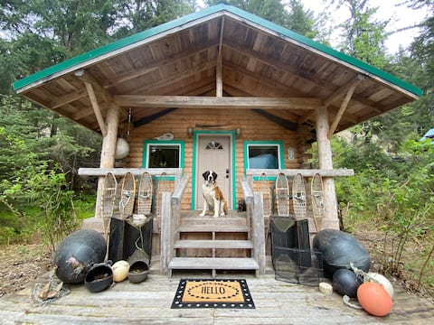 Kobuk's Kabin: Clean, comfy, and pet-friendly