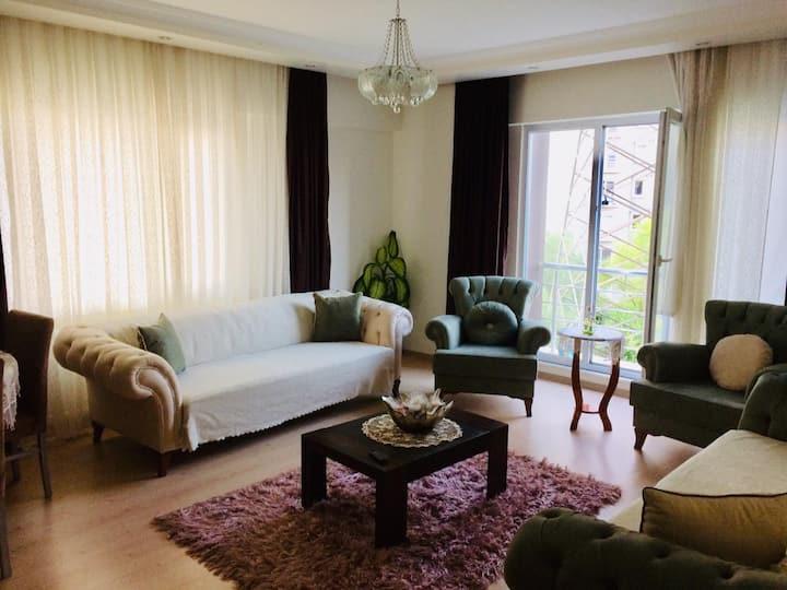 Comfortable flat/room