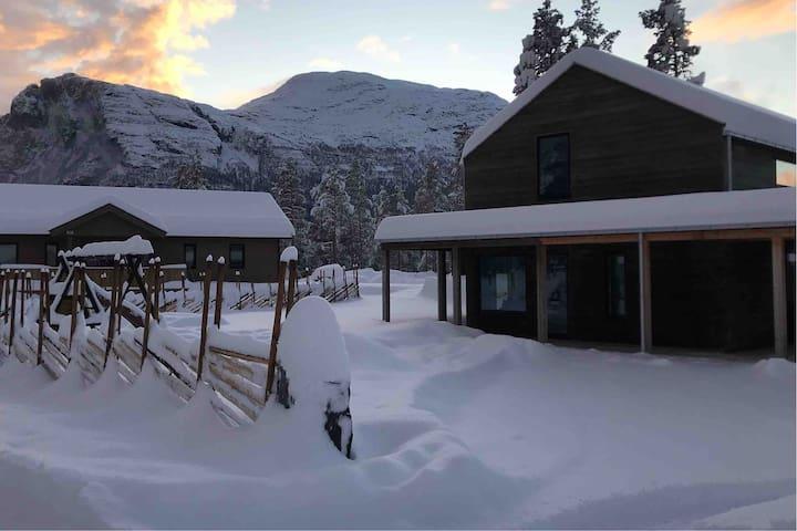 Leilighet i nytt hus på Svøo/Hemsedal
