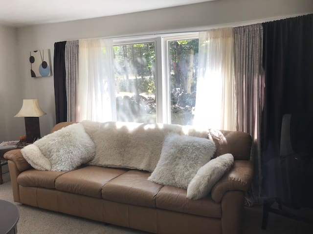 Bright and cozy living room that looks out to the newly landscaped forested yard. Health and fitness magazines in the living room, feel free to read through them. Artwork throughout the home which the majority has been custom and hand made by owner