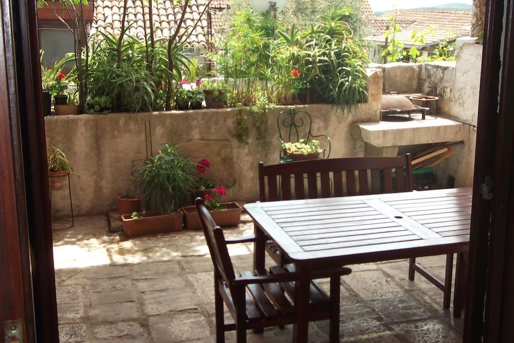 garden from room