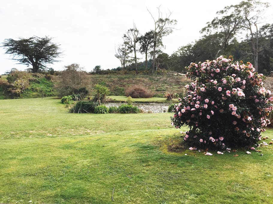 Take a walk around the private park like grounds